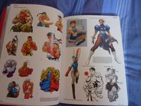 photo d'illustration pour l'article goodie:SF20 - The Art of Street Fighter