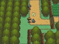 Pokemon Version Argent SoulSilver sur Nintendo DS