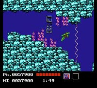 une photo d'écran de Teenage Mutant Hero Turtles sur Nintendo Nes