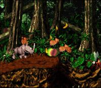 une photo d'écran de Donkey Kong Country 2 sur Nintendo Super Nes