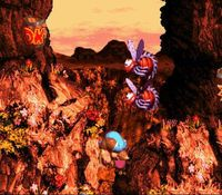 une photo d'écran de Donkey Kong Country 3 sur Nintendo Super Nes