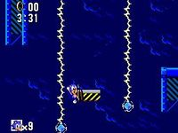 une photo d'écran de Sonic the Hedgehog (Master System) sur Sega Master System