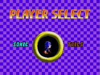 Sonic the Hedgehog Chaos, capture d'écran